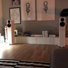 totem hawk speakers densen amp