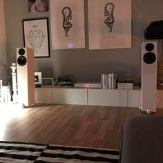 totem hawk speakers densen amp