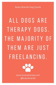 Bubu Brands Dog Quote: All dogs are therapy dogs. The majority of them are just freelancing. Bubu Brands the best dog treat company in the world! Best Treats For Dogs, Healthy Dog Treats, Cat Care Tips, Dog Care, Pet Tips, Therapy Quotes, Pumpkin Dog Treats, Natural Dog Treats, Military Dogs