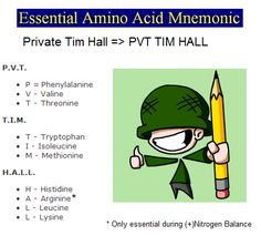 Mnemonics for amino acids. Cool and easy to remember