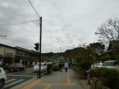 """Suzuhiro"", Odawara Kanagawa Japan (Novembre)"