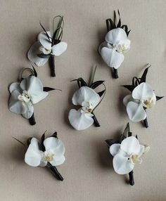 Orchid Boutonnieres - Wedding Colors: White, black, pink, gray, silver / Venue: Country club, farm, ranch, mansion + estate, park, mountain / Themes & Style: Glamorous, modern, luxurious, modern, whimsical — See more on The Knot!