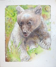 'Ursa Minor' Watercolour Mijello_Mission Gold Class and Ink-pen on Saunders Waterford by St Cuthberts Mill, 47 x 57 cm Ursa Minor, St Cuthbert, Gold Class, Petra, Conservation, My Arts, Ocean, Watercolor, Ink