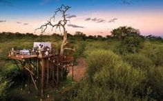 Chalkley Treehouse, Lion Sands Game Reserve, South Africa