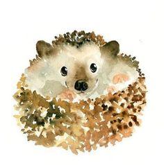 Hedgehog adorable hérisson aquarelle