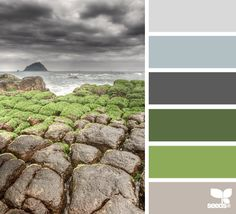 Great example of how nature is a great scholar of how and what colors work together. Can you see how the palette on the right could be adapted for use in a home interior?