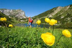 Wiedersbergerhornbahn in Alpbach Travel With Kids, Golf Courses, Outdoor, Beautiful, Happiness, Children, Magic Forest, Summer Vacations, Tourism