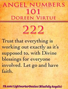 222: Trust that everything is working out exactly as it's supposed to, with Divine blessings for everyone involved. Let go and have faith.