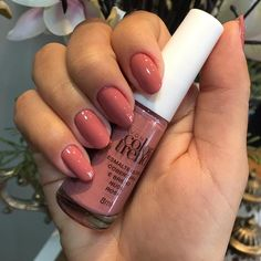 Beauty Forever, 139, Nail Polish Collection, Tupperware, Manicure And Pedicure, Toe Nails, Color Trends, Flower, Crochet