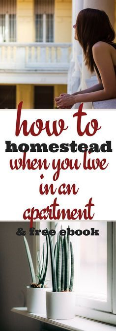 Homesteading does not require acres of land and a barn of livestock. It CAN, of course, but many homesteaders live in apartments! It's definitely possible.