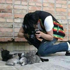 yes, this is michael jackson taking pics of kittens