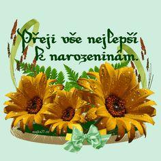 prani_k_narozeninam Happy Birthday Quotes, Happy Birthday Wishes Quotes, Birthday Quotes