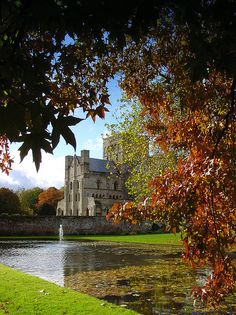 Hospital Of St Cross in Winchester - Hampshire, England Winchester England, Winchester Hampshire, Hampshire England, England And Scotland, British Isles, Landscape Photos, Great Britain, Beautiful Landscapes, Places To See
