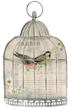 bird cage by christian Vintage Pictures, Vintage Images, Love Birds Wedding, Bird Cages, Vintage Labels, Botanical Art, Bird Art, Vintage Paper, Bird Feathers