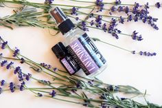S.W. Basics Lavender Hydrosol