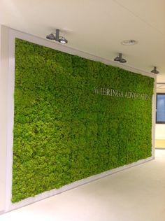 vruchtbaarheid, mos op de muur.Groen schilderij. Moderne kunst met een vleugje groen - - Pinned by Idea Concept Design.nl