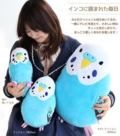 (C)Sekiguchi Hug me! Fully parakeet colllection and hugging cushion. Seki...