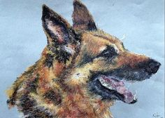 "German Shephard Dog: A design by Kelly Goss Art printed on to 5 x 7"" greeting cards for all occasions with semi-gloss finish. Customise your greeting. White envelope provided. The perfect greeting card for someone with a love of art, animals, pets and dogs."