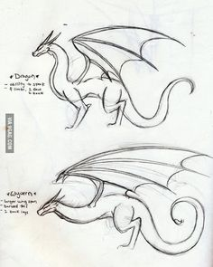and Wyvern. Know the difference Dragon and Wyvern. Know the differenceDragon and Wyvern. Know the difference Drawing Techniques, Drawing Tips, Drawing Reference, Realistic Drawings, Easy Drawings, Easy Dragon Drawings, Drawing Sketches, Art Sketches, Drawing Drawing