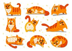 Cats - Set 1 #cats #meow #illustration Rooster, Kids Rugs, Nice, Cats, Illustration, Animals, Home Decor, Gatos, Animales