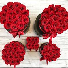 Welche darf es sein? Unsere ewig blühenden roten Infinity Rosen sind wieder in alles Größen erhältlich : www.theroyalroses.de #theroyalrosesgermany #rosebox #infinity #availablenow