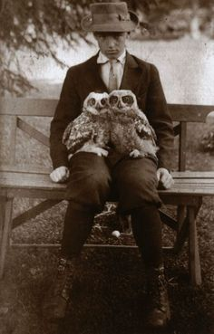Boy with Owls Vintage 1910 Edwardian Boyhood Unusual Two Owl Birds Pets Black & White Sepia Unique Weird Strange Old Photography Photo Print,