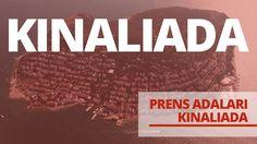 PRENS ADALARI - KINALI ADA BELGESELİ Signs, History, Historia, Shop Signs, Sign