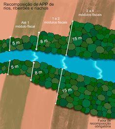 O que é uma nascente e como deve ser protegida? A nascente é o afloramento da água subterrânea que forma um curso d´água, como os rios, córregos e reservatórios