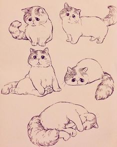 Draw Cats - My list of beautiful animals Cute Animal Drawings, Animal Sketches, Hipster Drawings, Couple Drawings, Easy Drawings, Pencil Drawings, Cat Sketch, Drawing Sketches, Girl Sketch