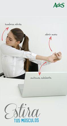 Todos tenemos la tendencia de encorvarnos frente al teclado, queramos o no. Para esto existe un ejercicio que nos ayudará a estirar el área escapular. Consiste en abrir las manos a lo ancho, como si fuésemos a abrazar a alguien, mover las muñecas hacia adelante y hacia atrás con el pulgar de arriba a abajo y llevar los hombros hacia atrás.