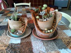 jardins miniatures faits maison