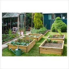 GAP Photos - Garden & Plant Picture Library - Garden view with veg beds and watering can - GAP Photos - Specialising in horticultural photography