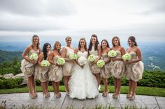 Maid/Matron one shoulder Vera Wang, Bridesmaids strapless Wtoo. Champagne and Ivory wedding.