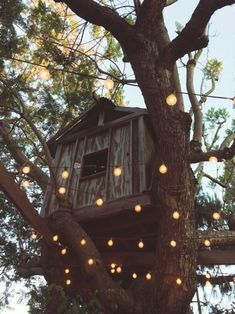 Up House, Outdoor Living, Outdoor Decor, In The Tree, My Dream Home, Future House, Sweet Home, Home And Garden, Cottage
