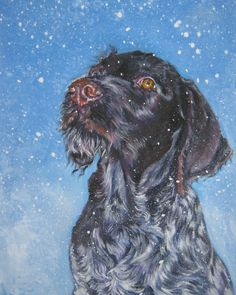 German Wirehaired Pointer dog art CANVAS print of LA Shepard painting 8x10 gwp by TheDogLover on Etsy https://www.etsy.com/listing/42791893/german-wirehaired-pointer-dog-art-canvas