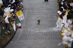 In Mexico people line the street to see the Pope, this little guy thought other wise. What a happy little guy he is...