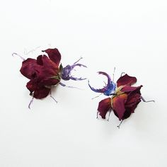 Stag Beetles Fighting - Made of wilted red roses - Lim Zhi Wei - Limzy