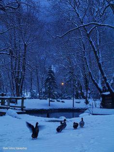 Naousa, Macedonia Hellas I Love Winter, Winter Night, Winter White, Travel Around The World, Around The Worlds, Winter Solstice, Macedonia, Winter Scenes, Winter Wonderland