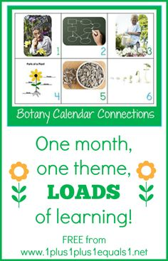 Botany Theme Calendar Connections {free} from @1plus1plus1