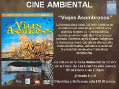 January 9th: CEDO presents Environmental Films 7pm *Free Entry @ CEDO in Las Conchas