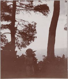 Tsarevich Alexei look over the sea. (Most likely in the Crimea)