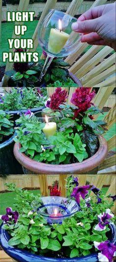 light-up-your-plants.jpg 620×1,395 pixels