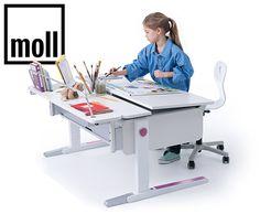 Which Moll Desk?