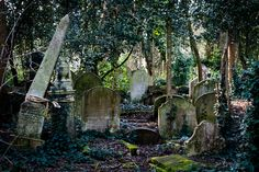 Highgate Cemetery — London, England, besides being infamous for the Highgate Cemetery vampire, it's a gorgeous Victorian cemetery with beautiful architecture.