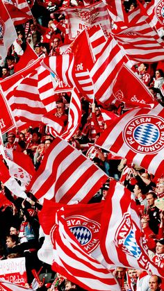 widescreen Fc Bayern Munich HD Wallpapers 1080x1920 for 4K monitor