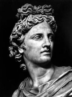 Head of the Statue of Apollo Known as the Belvedere Photographic Print Photographic Print: Head of the Statue of Apollo Known as the Belvedere : Ancient Greek Sculpture, Greek Statues, Ancient Greek Art, Statue Tattoo, Sculpture Head, Roman Sculpture, Sculptures, Angel Sculpture, Apollo Tattoo