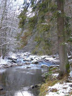 Puzzle, River, Left Out, Road Trip Destinations, Hiking, Woodland Forest, Vacation, Nature, Viajes