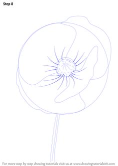 how to draw a simple poppy