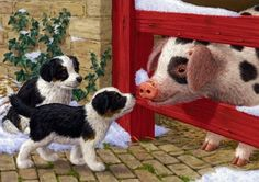 Puppies and Pig - Other Wallpaper ID 2016989 - Desktop Nexus Abstract