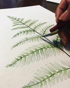 Silver Fern Print, Watercolor Print, Watercolor Fern Print, Watercolor Art, Botanical Print